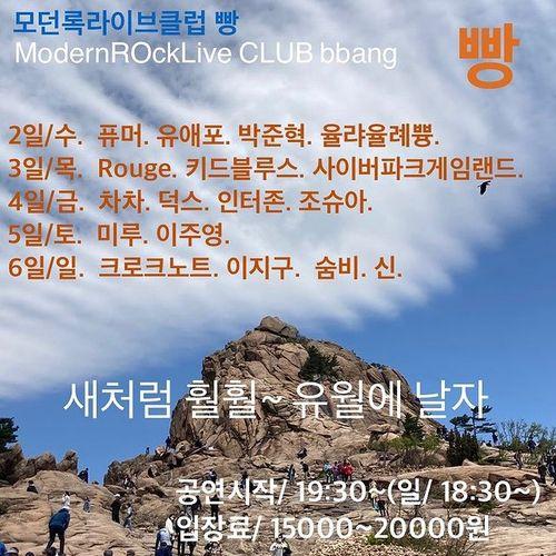6월 빵 공연 Live poster